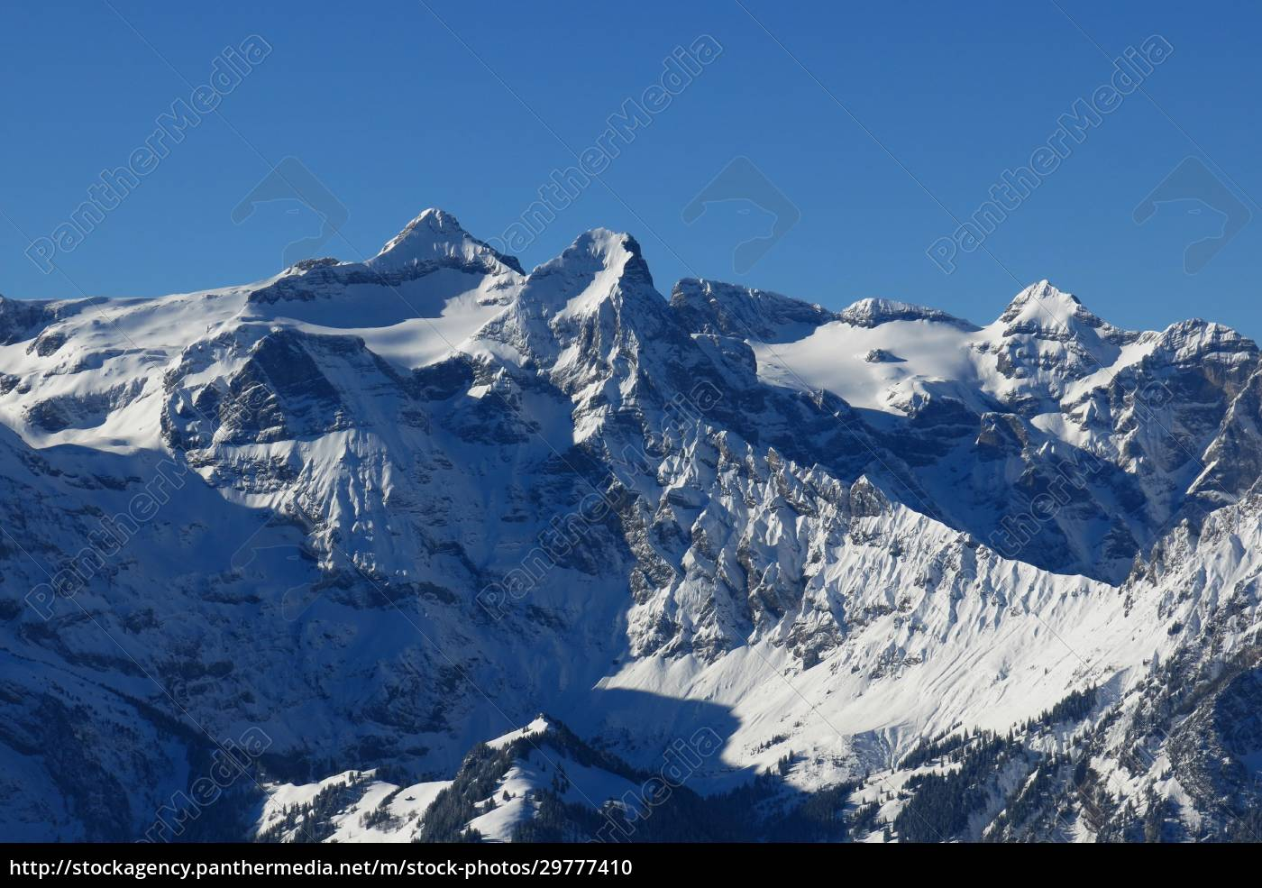 uri, rotstock, , high, mountain, in, central - 29777410