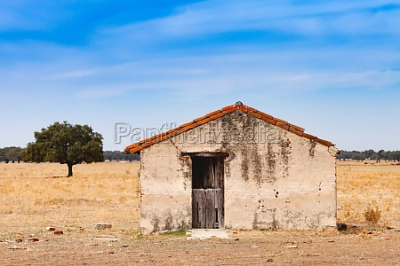 desolate old house with a wooden