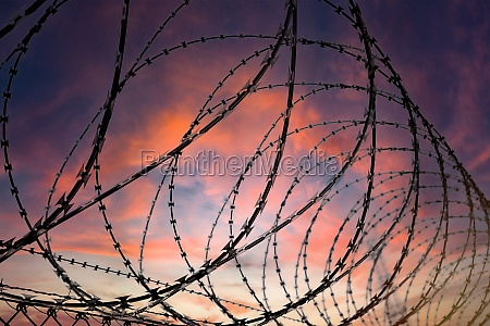 silhouette of a barbed wire fence