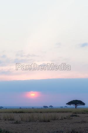 sunset in dark clouds amboseli kenya