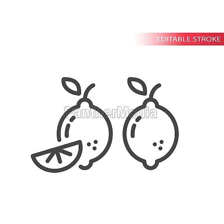 lemon slice line vector icon