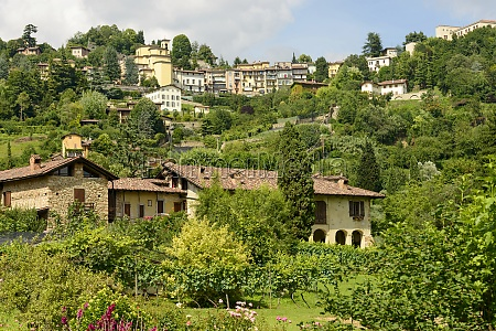 houses on green hill and borgo