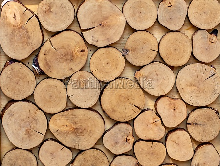 wooden background made of cutted round