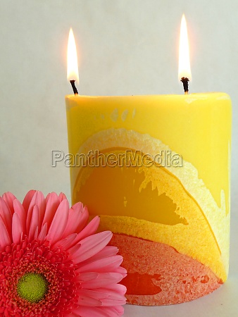 a flower and a candle
