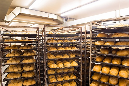 bread bakery food factory production with