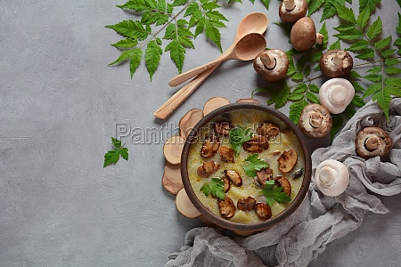 delicious soup with mushrooms champignon and