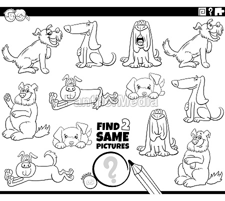 find two same dog characters task