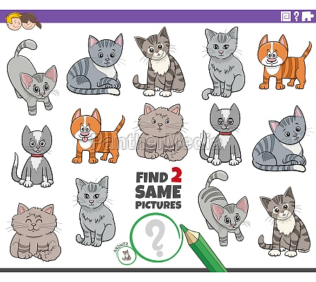 find two same cartoon cats characters