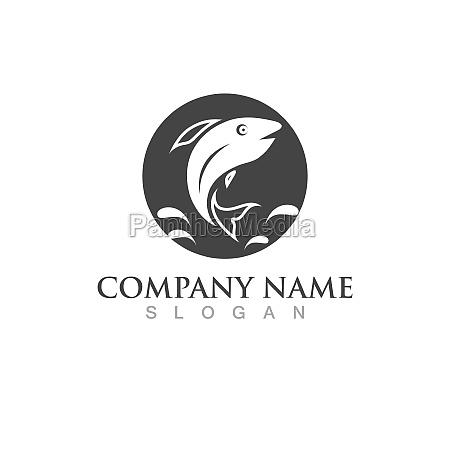 fish salmon logo template creative vector