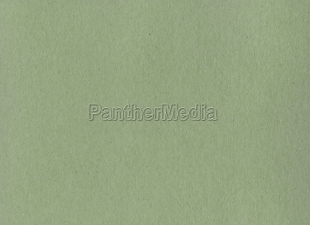 clean green cardboard paper background texture