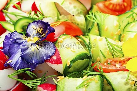 green vegan salad food background
