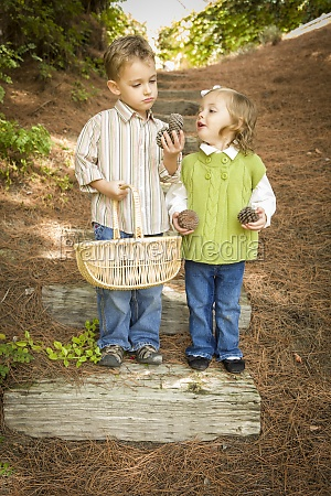 two children with basket collecting pine