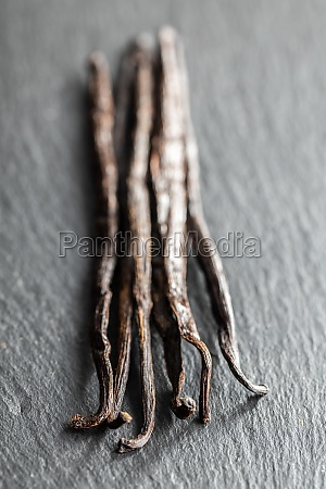 vanilla pods sticks of vanilla