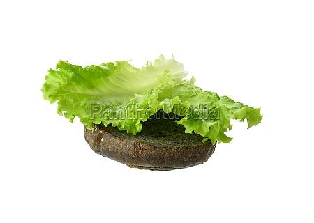 green lettuce leaf lies on a