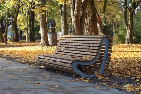 autumn city park bench