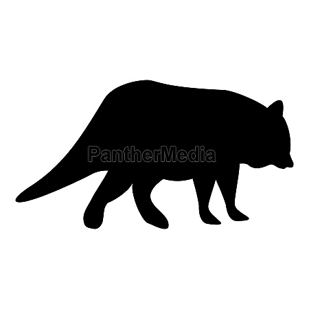silhouette raccoon coon black color vector