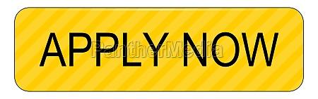 apply now button yellow on white