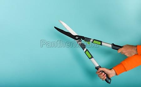 gardener holds a scissor to cut