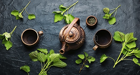 herbal tea with nettle