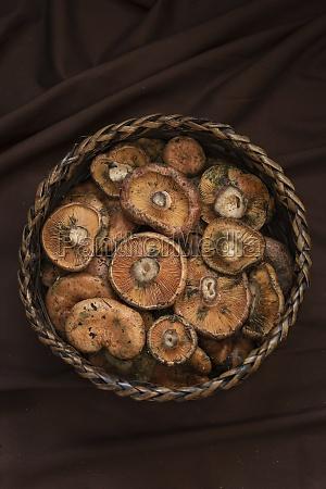 wicker bowl with fresh raw saffron