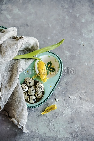 quail eggs easter eggs