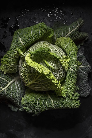 whole head of green cabbage over