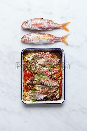 oven cooked red mullet with red