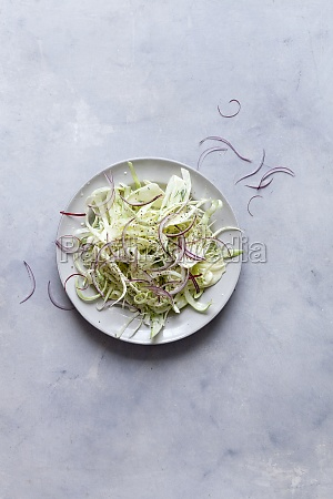 fennel salad with red onions