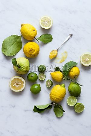 lemons limes and lemon curd