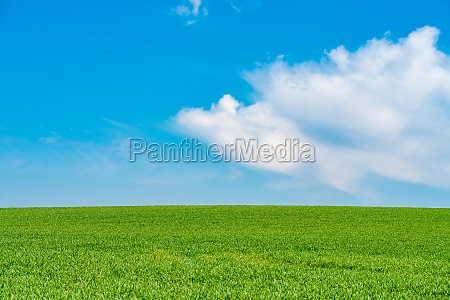 green hill with dreamy clouds and