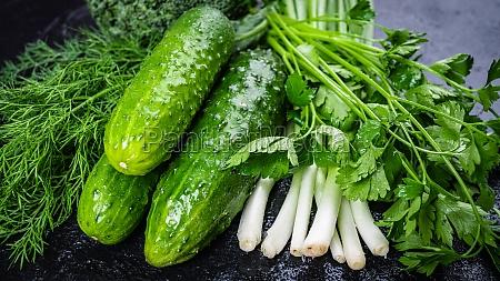fresh organic homegrown herbs and leaf