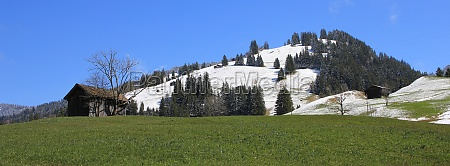 green meadow and snow covered hill