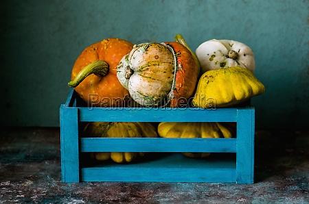 decorative, pumpkins, in, a, blue, box - 29884616