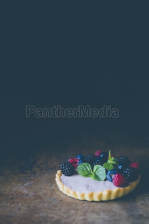 a berry cake with mint against