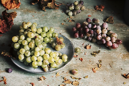 fresh grapes served in a plate