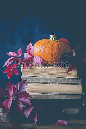 pumpkin on top of a book