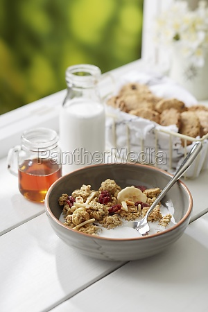 granola breakfast bowl with chocolate cookies