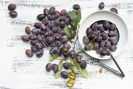 damsons with leaves and a destoner