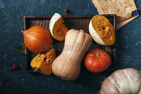 variety of pumpkins of different size