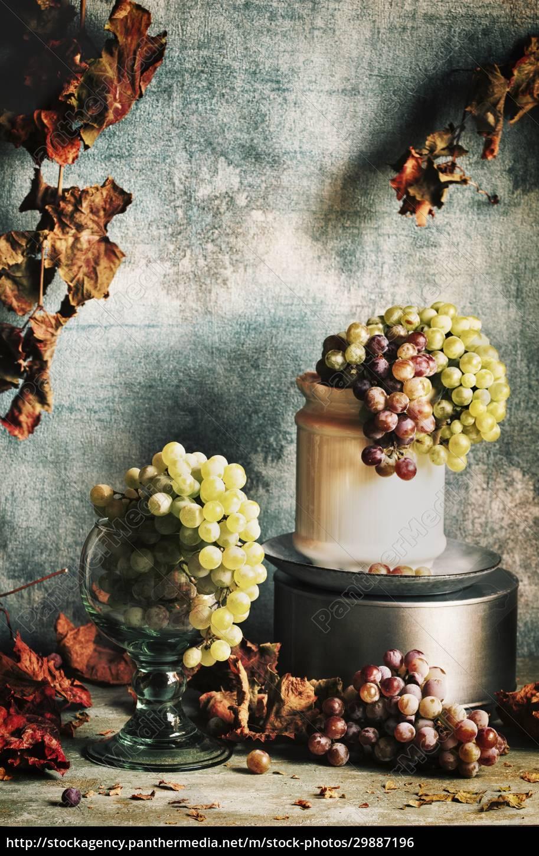 grapes, still, life - 29887196