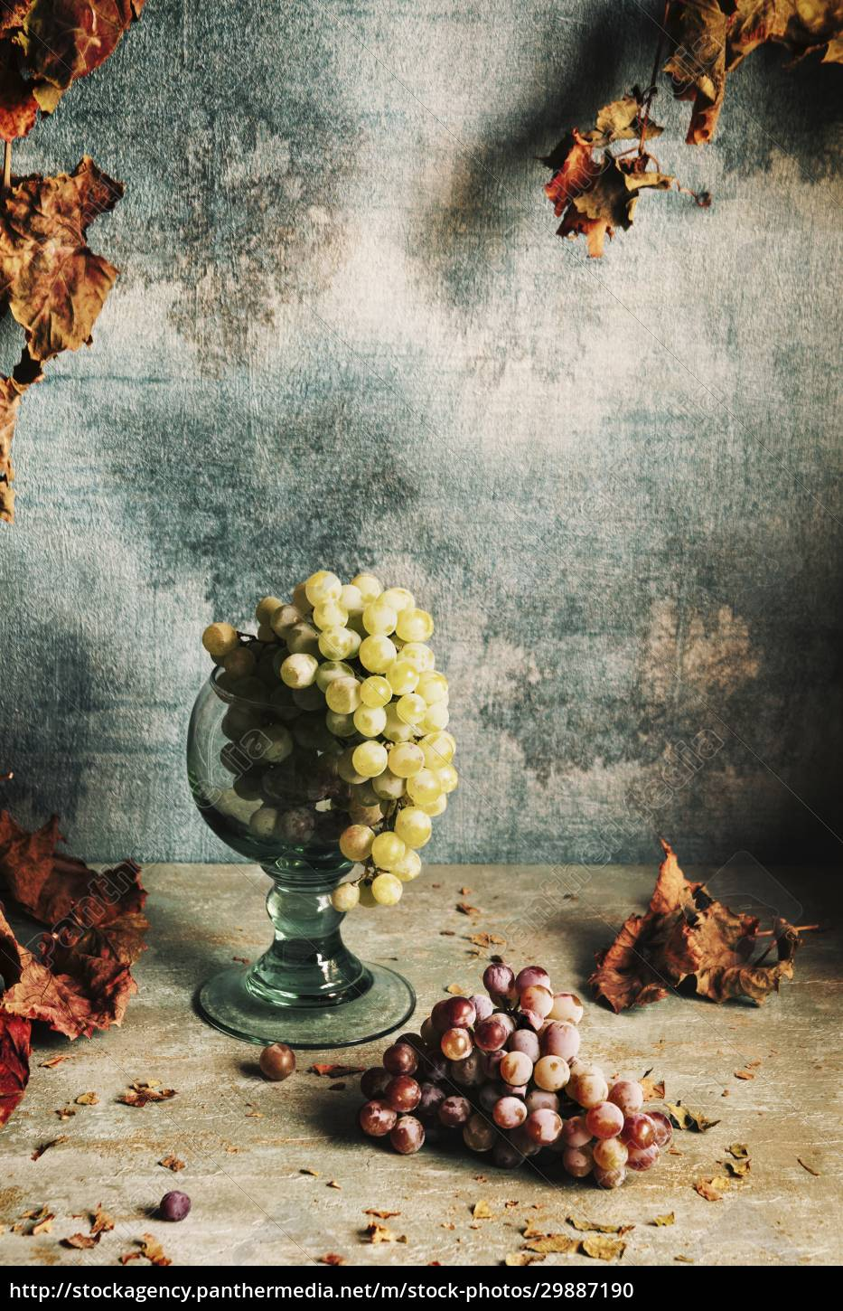 still, life, with, grapes, and, autumn - 29887190