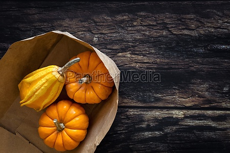 halloween decoration on dark background