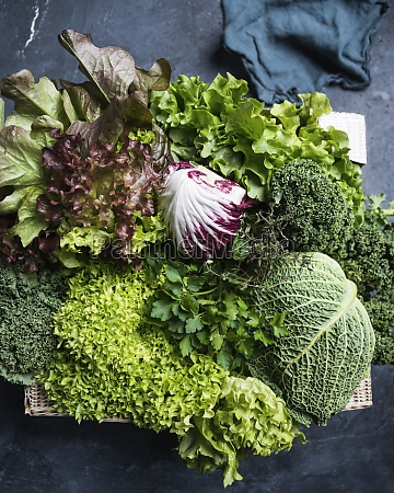 a crate of savoy cabbage parsley