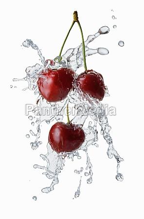 cherries with a splash