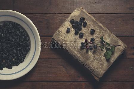ripe blackberries garnished by leaves in