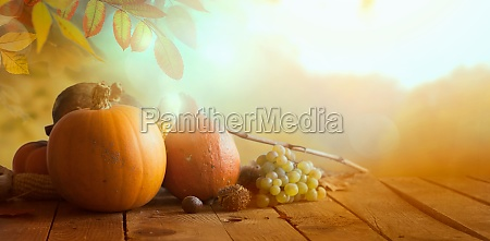 thanksgiving day nature background with autumn