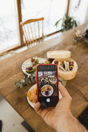 hand of person using smartphone and