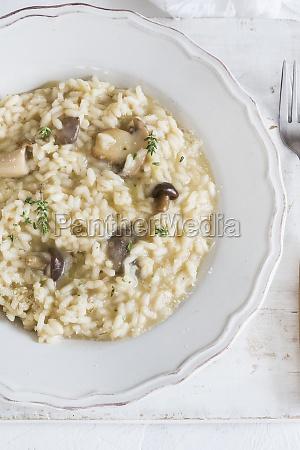 creamy mushrooms risotto