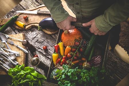 farmer holding harvested vegetables
