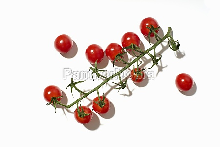healthy cherry tomatoes on white background